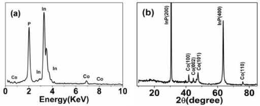 The characterization of the Co/InP nanocomposite structure: (a) EDS spectrum and (b) XRD pattern.