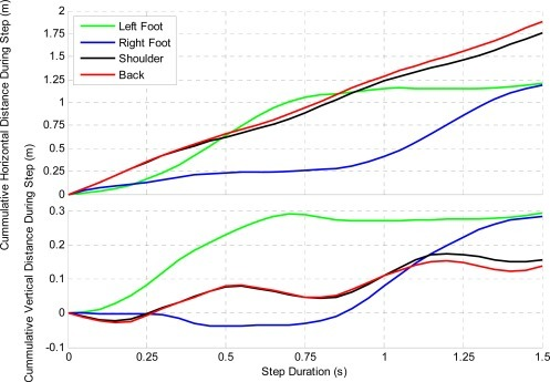 Hiker's Average Displacement at Various Sensor Locations during each Step.