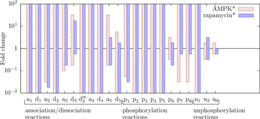 Parameter sensitivity analysis.Each bar corresponds to a rate constant in the model and indicates a range of values for that rate constant over which the following pattern of qualitative behavior is obtained as a stress input (AMPK* or rapamycin* level) is varied: operation in a translation state at low stresses, oscillations between translation and autophagy states at intermediate stresses, and operation in an autophagy state at high stresses. For red bars, the stress input is AMPK* level; we considered levels of AMPK* from 0 to 106 copies per cell. For blue bars, the stress input is rapamycin* level; we considered levels of rapamycin* from 0 to 105 copies per cell. To find the upper and lower bounds of a bar, we varied (in discrete steps) the value of its corresponding parameter individually100-fold above and 100-fold below the parameter's nominal value, which corresponds to 1 on the vertical axis. For each parameter value tested, scans of AMPK* and rapamycin* levels were performed to determine whether responses to varying levels of stress follow the same pattern as the system with nominal parameter values. The height of a bar serves as a measure of robustness. We considered all rate constants of the model with the exception of p9. (Recall that the influence of p9 on system behavior has already been considered, in Fig. 7.)
