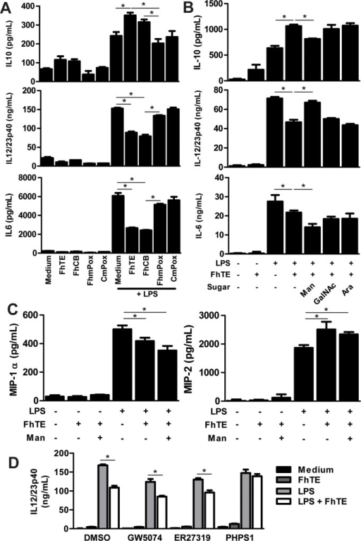 Oxidation of parasite components partially inhibits modulation of LPS-induced maturation of DCs by FhTE.BMDCs were cultured in the presence of 75 μg/mL of FhTE, FhCB (oxidation negative control) or FhmPox (oxidized FhTE) in presence or absence of LPS (1 μg/ml) overnight at 37°C. Then, culture supernatants were collected and analyzed by ELISA for IL-6, IL-10 or IL-12/23p40 (A). BMDCs were also pre-incubated for 45 min. with mannose (Man), N-Acetyl-Galactosamine (GalNAc) or arabinose (Ara) at 10 mM and then stimulated as in A. Culture supernatants were analyzed by ELISA for detection of IL-6, IL-10 or IL-12/23p40 (B) and MIP-1α and MIP-2 (C). Alternatively, BMDCs were pre-incubated for 45 min. with 10 μM of specific signaling inhibitors (PHPS1; GW5074; and ER27319) and then stimulated with FhTE (75 μg/mL) in presence of LPS (1 μg/ml) (D). Results are expressed as the mean of three independent experiments (±SD, indicated by error bars). Asterisks indicate statistically significant differences (*p < 0.01) with respect to LPS-stimulated BMDCs.