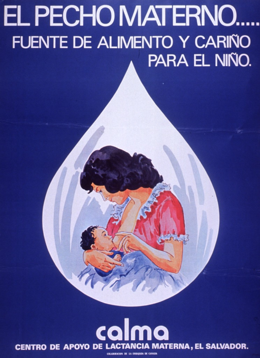 <p>Predominantly blue poster with white lettering.  Title at top of poster.  Visual image is an illustration of a mother breastfeeding her baby.  The illustration is set against a droplet-shaped background.  Publisher and sponsor information at bottom of poster.</p>