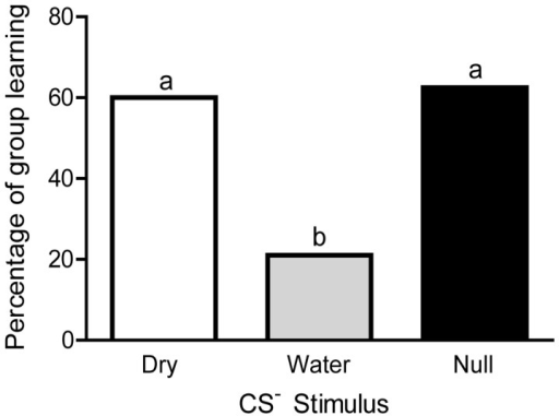 Forager honey bees conditioned with a wet toothpick as the US–show reduced learning. The percentage of honey bees in each group that reached the learning threshold is depicted here. The Fisher exact probability test was used to compare the number of responders in each category (dry: 9/15; water: 4/19; : 6/9). Letters indicate significant differences (α<0.05). Groups designated with the same letter did not differ.