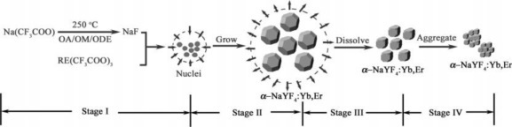 Schematic illustration of the growth stages of α-NaYF4:Yb3+, Er3+ nanocrystals via a delayed nucleation pathway [27].