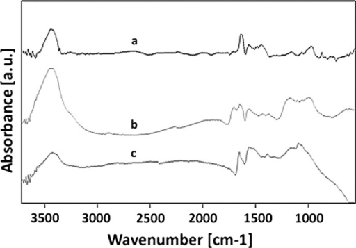 FT-IR spectra of MWCNT (a), MWCNT-F (b) and MWCNT-NH (c)