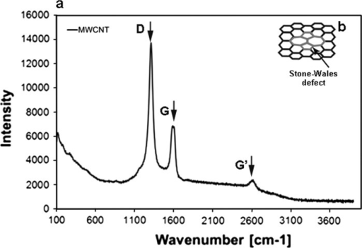Raman spectra of MWCNTs (a), Stone–Wales (SW) defect (b)
