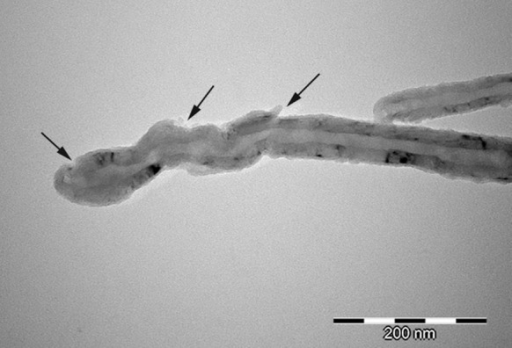 TEM photomicrograph of MWCNT after chemical functionalisation (MWCNT-F)