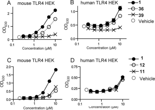 Representative data of SAR compound screeningusing TLR4 transfectomas.Mouse TLR4 (A,C), and hTLR4 (B,D) HEK transfectomas were incubatedwith graded concentrations of the indicated compounds 1, 36, and 39 (A) or 11 and 12 (B) for 18 h. DMSO 0.5% served as the vehicle control.The specific activation of the reporter cell lines was measured bySEAP activity in the supernatant by absorption at 630 nm. Data shownare mean ± SEM of triplicate data.
