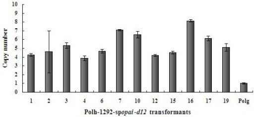 Relative copy numbers of integrated expression cassettes in Y. lipolytica multi-copy transformants. Real-time PCR was used to estimate the copy numbers of the integrated expression cassettes among 12 Polh-1292-spopai-d12 transformants. Y. lipolytica Polg was used as a control organism with a single copy of both the ura3 and suc2 target sequences. As ura3, opai and d12 coexisted in expression cassettes, the copy numbers of three genes were considered to be equal. Error bars represent standard deviations from biological triplicates.