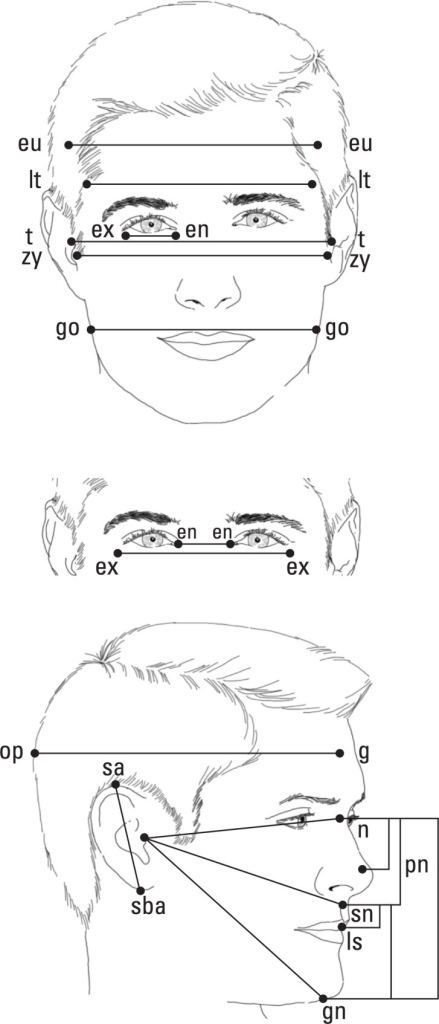Anthropometric measurements. The 16 anthropometric measurements obtained from each of the three-dimensional images.