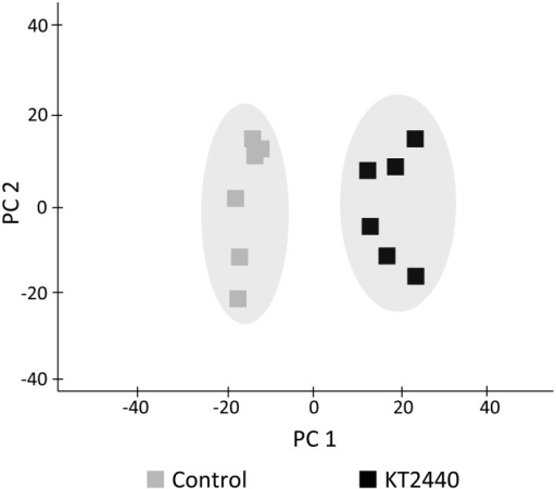 Principal component analysis (PCA) score plot of metabolite fingerprinting of maize roots (var. Jubilee) 3 days after root inoculation with KT2440 (n = 6 replicates, each replicate representing a pool of 3 plants). Gray squares represent non-bacterized plants and black squares represent bacterized plants.