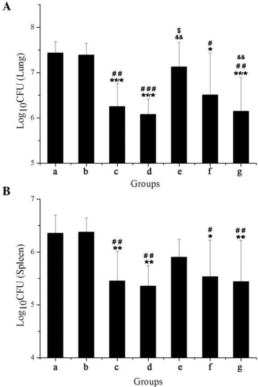 Number of viable bacteria in the (A) lungs and (B) spleens 3 months post-infection with Mycobacterium tuberculosis clinical isolate HB361. (a) Vector group; (b) rifampin (RFP) group; (c) pyrazinamide (PZA) group; (d) antigen 85A (Ag85A) DNA group; (e) Ag85A/6 kDa early secretory antigenic target (ESAT-6) chimeric DNA group; (f) RFP+Ag85A/ESAT-6 chimeric DNA group; (g) PZA + Ag85A/ESAT-6 chimeric DNA group. The bacterial loads present in the Ag85A/ESAT-6 DNA group were determined from the lungs and spleens of 10 dead mice. Data are presented as the mean ± standard deviation. *P<0.05, **P<0.01, ***P<0.001 vs. group a; #P<0.05, ##P<0.01, ###P<0.001 vs. group b; $P<0.05 vs. group c; &&P<0.01 vs. group d and e.