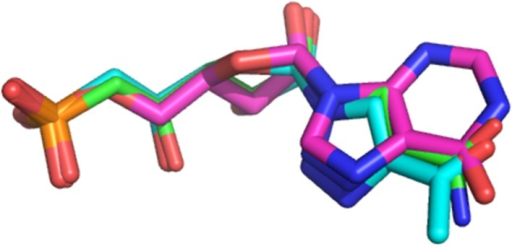 Superimposition of the docking poses obtained for IMP (pink sticks), derivatives 1n (cyan sticks) and 1q (green sticks) in the substrate binding site.