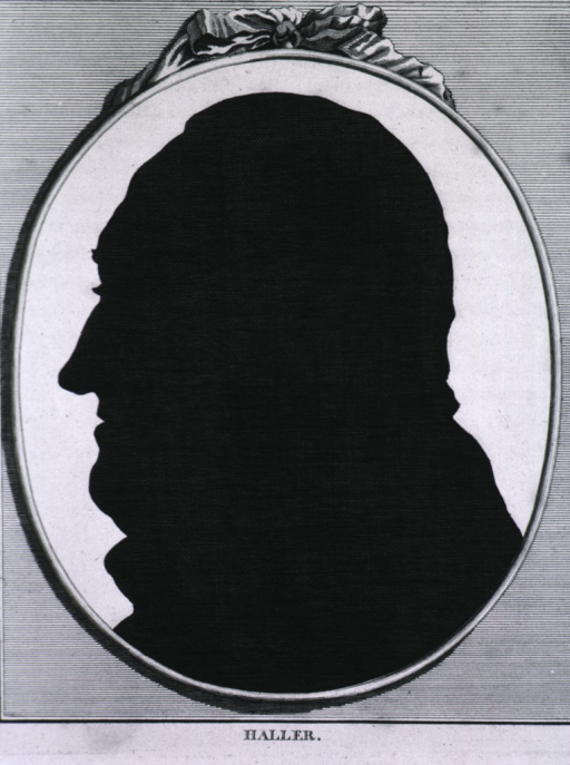 <p>Silhouette, left profile.</p>