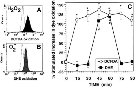 Anti-CD3–stimulated generation of ROS in 9C127 murine T cell hybridoma. (A) Representative FACS® profile for anti-CD3–induced DCFDA oxidation at 15 min with unstimulated cells (dashed lines) and anti-CD3–stimulated cells (filled profile). (B) Representative FACS® profile for anti-CD3 stimulated DHE oxidation at 60 min with unstimulated cells (dashed lines) and anti-CD3–stimulated cells (filled profile). (C) Kinetics of DCFDA/DHE oxidation in 9C127 cells. 9C127 cells were stimulated with anti-CD3 as described in Materials and Methods and the oxidation of DCFDA (○) and DHE (▪) was determined by FACS® analysis. The data are expressed as the percent stimulated increase in mean channel fluorescence of DCFDA/DHE over unstimulated controls and represent the average of at least five separate experiments (± SEM). *Anti-CD3–stimulated DCFDA oxidation is significantly different from unstimulated controls (P < 0.05). #Anti-CD3–stimulated DHE oxidation is significantly different from unstimulated controls (P < 0.05).