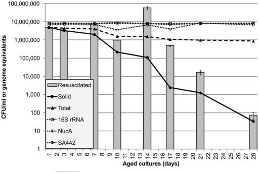 Bacterial counts in resuscitated cultures.Dotted lines: total count by microscopy (▴); genomic DNA content as determined by qPCR using 16S rRNA (□), NucA (*) and Sa442 (○) primer sets. Solid lines: total culturable counts, in liquid culture by MPN tests (▪) and on solid agar (•). Bars represent the estimated viable count in MPN tests after resuscitation –a figure obtained by multiplying the counts in MPN tests without resuscitation by the fold change in growth following resuscitation with 25% spent medium (averages from three experiments with standard error bars).