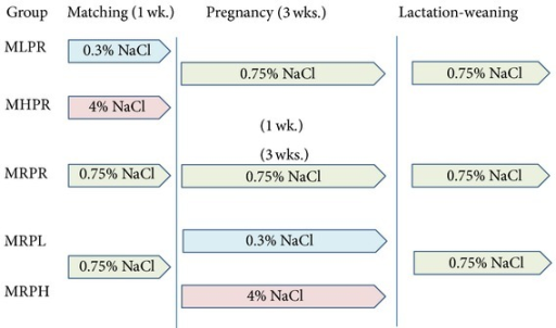 Protocol of the study. This graph shows each type of salt diet and the time period in which it was fed to the Dahl S rats. 0.3% NaCl, a low-salt (0.3% NaCl, w/w) diet; 0.75% NaCl, regular (0.75% NaCl, w/w) diet; and 4% NaCl, a high-salt (4% NaCl, w/w) diet.