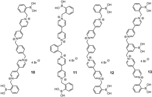 Viologens, 10–13, developed and tested by Singaram and co-workers for the structural dependency on their quenching effect [48].