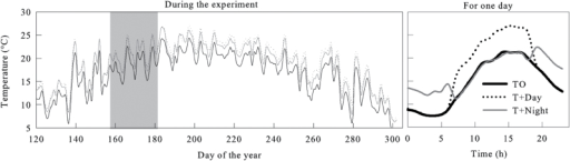 Daily temperatures experienced by black spruce saplings in the three thermal conditions (T0, control temperature; T+Day, temperature increase during the day; T+Night, temperature increase during the night) during the greenhouse experiment from April to October. Grey background corresponds to the water deficit period during June.