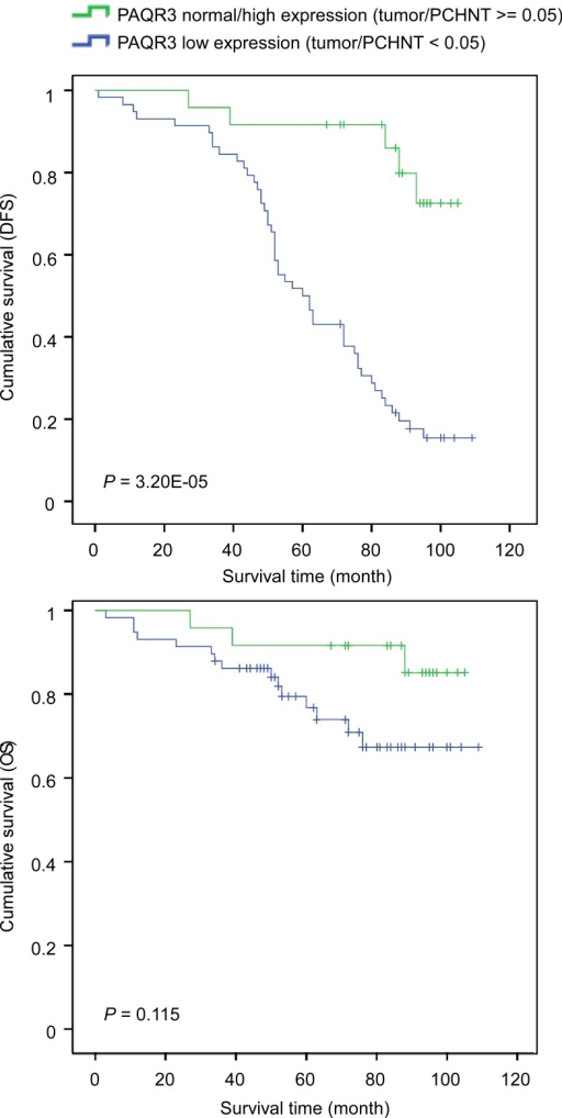 Correlation of PAQR3 expression level with survival of breast cancer patientsKaplan-Meier curves of disease-free survival (DFS, shown in A) and overall survival (OS, shown in B) in post-surgery patients with breast cancers according to the expression level of PAQR3.