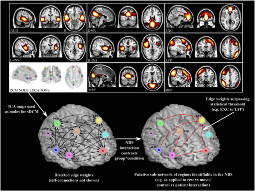 Analysis pipeline illustrating the use of ICA spatial maps to inform sDCMs. Directed edge weights derived from the sDCMs (both resting state and film viewing fMRI) were used in the NBS to test for condition by group effects.