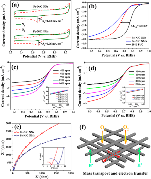 (a) CVs of Fe-N/C NNs and Fe-N/C NMs in O2- and N2-saturated 0.5 M H2SO4 solution. (b) ORR polarization curves of different Fe-N/C catalysts and 20% Pt/C in O2-saturated 0.5 M H2SO4 at 1600 rpm. ORR polarization curves of (c) Fe-N/C NNs and (d) Fe-N/C NMs in O2-saturated 0.5 M H2SO4 at different rotation rates. Inset is the corresponding K-L plots at a potential range from 0.35 to 0.55 V. (e) Nyquist plots of Fe-N/C NNs and Fe-N/C NMs. (f) Scheme of interconnected Fe-N/C NNs facilitating mass and electron transport.