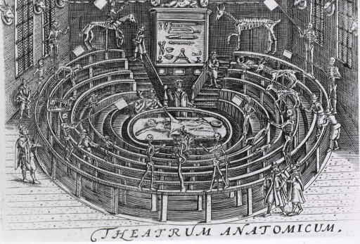 <p>Detailed view of the anatomical theatre at Leiden University, crowded with human figures and animated skeletons, and a display of dissecting instruments.</p>