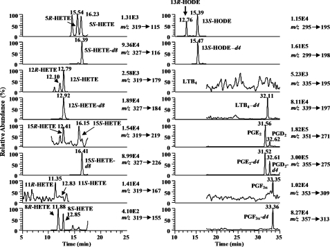 Chromatograms from targeted lipidomics analysis using LC-ECAPCI/MRM/MS for analysis of lipid metabolites from CESS cells. Chromatograms are shown for 5(R,S)-HETE (m/z 319 → m/z 115), 5(S)-[2H8]HETE (m/z 327 → m/z 116), 12(R,S)-HETE (m/z 319 → m/z 179), 12(S)-[2H8]HETE (m/z 327 → m/z 184), 15(R,S)-HETE (m/z 319 → m/z 219), 15(S)-[2H8]HETE (m/z 327 → m/z 226), 11(R,S)-HETE (m/z 319 → m/z 167), 8(R,S)-HETE (m/z 319 → m/z 155), 13(R,S)-HODE (m/z 295 → m/z 195), 13(S)-[2H4]HODE (m/z 299 → m/z 198), LTB4 (m/z 335 → m/z 195), [2H4]LTB4 (m/z 339 → m/z 197), PGE2 (m/z 351 → m/z 271), PGD2 (m/z 351 → m/z 271), [2H4]PGE2 (m/z 355 → m/z 275), [2H4]PGD2 (m/z 355 → m/z 275), PGF2α (m/z 353 → m/z 309), [2H4]PGF2α (m/z 357 → m/z 313).