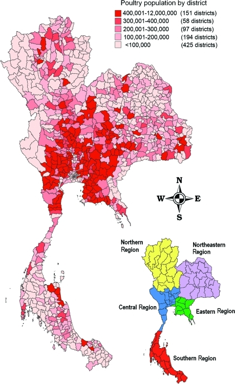 Distribution of poultry population in Thailand in 2003.