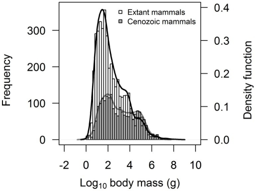 Frequency distribution of maximum species body size for Cenozoic mammals (in grey) overlaid on the distribution for extant mammals (in white).Curve fitting is based on a combination of kernel density estimation and smoothed bootstrap resampling. The figure clearly highlights the reduced frequency of small-bodied species in the Cenozoic mammal dataset, while the frequency of large-bodied species is comparable between both datasets.