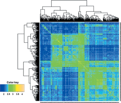 Heat map of the G matrix for the data set with 599 wheat lines genotyped with 1279 DArTs markers.