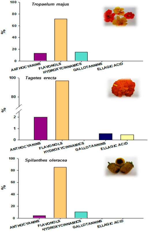 Identification of the edible flowers and the proportions of the individual phenolic compounds as part of the total compounds identified by HPLC-DAD-ESI/MSn.