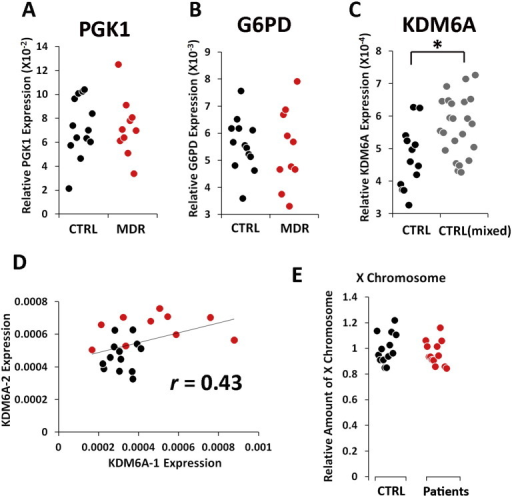 X-linked gene expression and X chromosome DNA. Each dot represents a human subject (black = healthy controls; red = patients with recurrent major depression). There was no difference in expression of PGK1 (A) and G6PD (B) genes between the controls and the patients. (C) A significantly higher KDM6A (t(34) = − 3.18, p < 0.05) expression was detected in the female controls with mixed ethnic backgrounds compared with the European female Caucasian controls. (D) There was a weak correlation between KDM6A RNA expressions between different batches of cells (Pearson's coefficient, r = 0.43, p = 0.04). (E) To rule out that patients with high XIST expression may have triple XXX chromosomes, we quantified XIST genomic copies relative to β-actin genomic copies on chromosome 7 in several controls and the patients with high XIST expression. There was no difference in relative amount of XIST genomic copies between the controls and the patients.