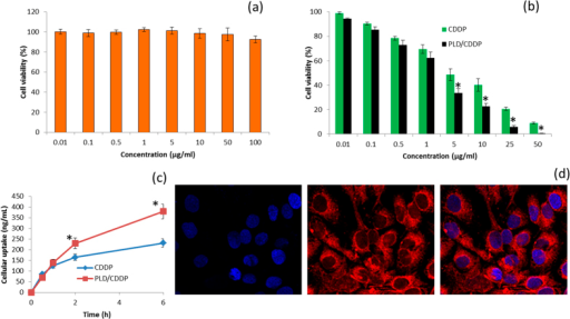 Cytotoxicity analysis of (a) blank nanoparticles (b) free CDDP and PLD/CDDP in MG63 osteosarcoma cancer cell. The cytotoxicity analysis was performed by MTT assay after 24 h incubation. Untreated cells were considered as control. (c) Cellular uptake of free CDDP and CDDP/PLD in MG63 cancer cells. (d) Confocal microscopy images demonstrating cellular internalization of PLD nanoparticles in MG63 cells. Data are expressed as standard deviation of the mean and n = 8. *p < 0.05 is the statistical difference between the cytotoxicity and cellular uptake of CDDP and CDDP/PLD treated group.
