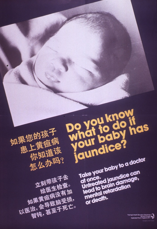 <p>Predominantly gray poster with yellow and white lettering.  Visual image is a b&amp;w photo reproduction of a sleeping infant.  Title and caption appear below photo in both English and Chinese.  Publisher information in lower right corner.</p>