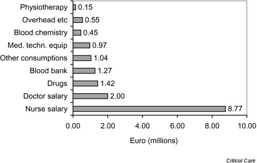 Contribution (%) of the different direct and indirect costs in the intensive care unit 1997–1999 (total expenses € 16,697,415).