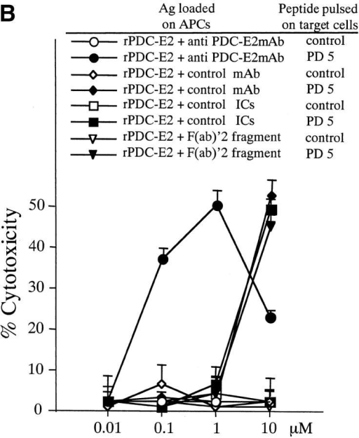 Induction of PD5-specific CTL lines with peptide, exogenous rPDC-E2 protein, or rPDC-E2 complexed with specific Abs. The cytotoxicity of CTL lines generated with the different Ags was tested against autologous BCL targets loaded with PD5 or control peptide at an E/T ratio of 40. (A) PBMCs from patient PBC10 were cocultured for 12 d with APCs loaded with rPDC-E2 protein or PD5 peptide at serial concentrations as indicated. (B) PBMCs from patient PBC9 were cocultured for 12 d with APCs loaded with serial concentrations of rPDC-E2 protein (as indicated) mixed with either human anti–PDC-E2 mAb, a control mAb, control ICs, or F(ab)′2 fragment of the human anti–PDC-E2 mAb. (C) PBMCs from patient PBC11 were cocultured for 12 d with APCs loaded with serial concentrations of rPDC-E2 protein (as indicated) mixed with affinity purified autoAbs from PBC sera or control Abs.