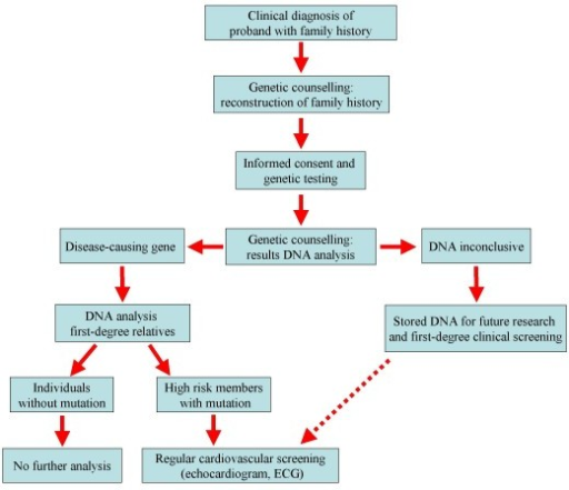Flow chart showing the clinical management and the genetic counselling for the heritable cardiomyopathies by a specialised cardiogenetic team.