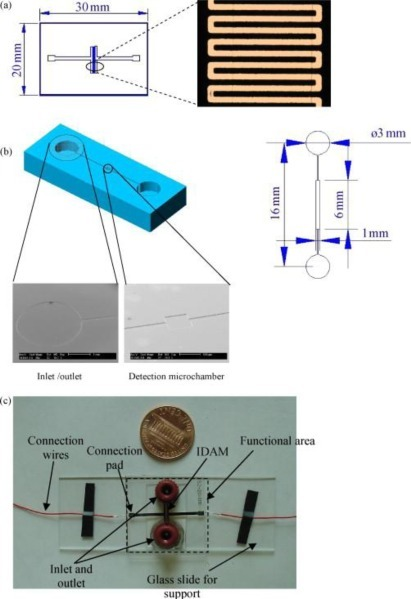 (a) IDAM chip with gold microelectrodes on a glass wafer, (b) a microchannel with a detection microchamber, and inlet and outlet channels, and (c) an assembled microfluidic flow cell with embedded IDAM and connection wires [84].