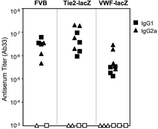 Immunization with β-gal protein in adjuvant raises strong antibody responses in wild type (FVB) and transgenic (VWF-lacZ and TIE2-lacZ) mice. Serum samples were taken 2 weeks after boosting with soluble β-gal and specific antibodies were measured by ELISA. Closed symbols represent sera assayed on β-gal coated plates and open symbols represent sera assayed on control, BSA-coated plates.