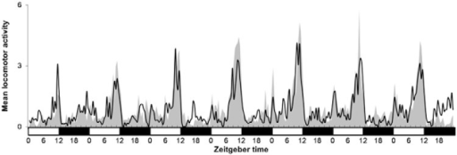 : activity/rest behaviour of two groups of Aedes aegyptifemale after the injection of double-stranded RNA (dsRNA) for seven days inlight-dark cycles (LD). One group was injected with timelessdsRNA (black line) and the other with lacZ dsRNA (grey area),used as control. White horizontal bars indicate lights-on and black horizontalbars indicate light-off. Graphics depict average activity according toWilliam's mean (Haddow 1960). Readings on the 30 min after the transitions LDand dark-light were interpolated to smooth startle responses.