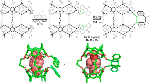 Top:synthesis of hemicarcerands 6a and its the reversiblegate-closing and gate-opening. The photochemical gates are coloredin green. Bottom: computed structures of complexes formed between para-dimethoxybenzene and 6b.