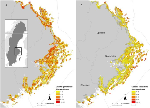Species richness patterns of coastal specialist and generalist species.The archipelago is situated in the Baltic Sea off the east coast of Sweden. Observed number of species per square for (A) generalist species and (B) specialist species. The location of the counties are shown in (B).