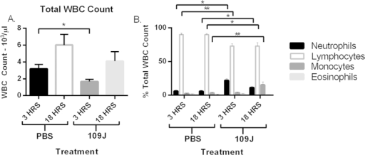 Inflammatory cell response to intravenous injection of B. bacteriovorus 109J.To profile the host cell response in the blood, mice were injected through the tail vein with B. bacteriovorus 109J. Profile of (A) total white blood cell (WBC) counts and (B) inflammatory cells after tail vein injection of B. bacteriovorus 109J. Blood was assessed at 3 and 18 hours post-injection. Blood profiles were performed by ANTECH Diagnostics (New Hyde Park, NY, USA). Data represent mean ± standard error of the mean. Student's t-test was performed to compare each treated sample to their respective control sample, *P < 0.05; **P < 0.01.