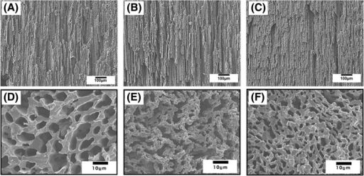 Representative FE-SEM images of aligned porous CaP scaffolds produced with various CaP contents (15 vol% : (a),(d), 20 vol%: (b),(e), and 25 vol% : (c),(f)), showing their porous structures developed parallel to ((a),(b),(c)) and normal to ((d),(e),(f)) the direction of extrusion