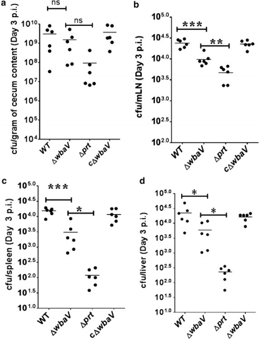 Colonization of cecum, mLN, spleen and liver of C57BL/6 mouse by S. Enteritidis and OAg-negative mutants: Streptomycin pretreated mice were infected with respective bacterial strains through oral route of administration. Mice were sacrificed on 3 days p. i. and cecum (a), mLN (b), spleen (c) and liver (d) were collected and CFU in each organ were determined. Statistical significance is indicated by asterisks (*P < 0.05, **P < 0.01, ***P < 0.001), ns not significant
