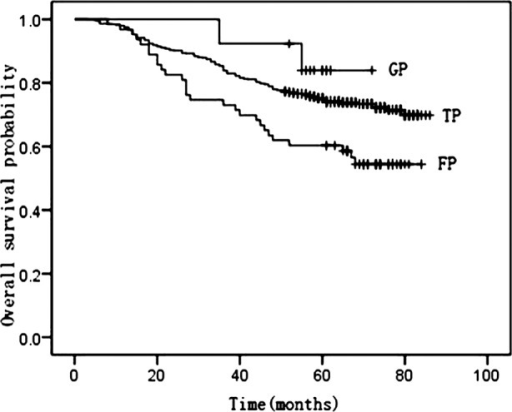 Kaplan-Meier curves of overall survival by TP, GP and FP regimens.