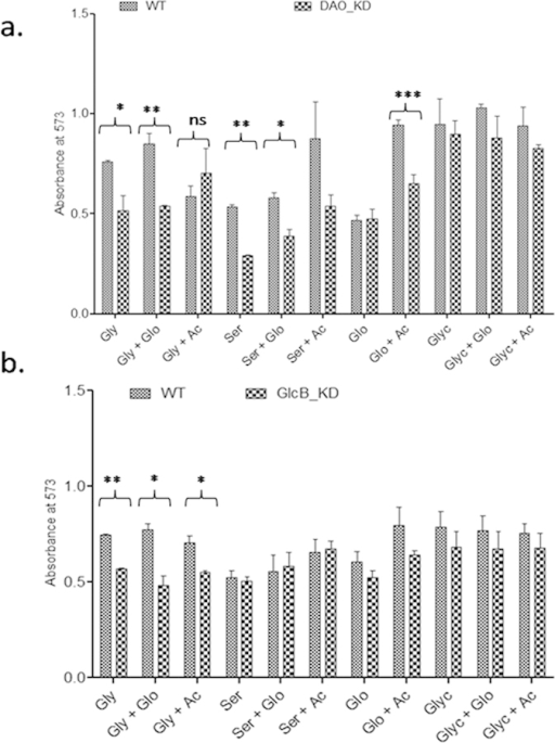 Effect of supplementation on growth: (a) Growth of DAO_KD and WT on different carbon sources with or without acetate or glyoxylate supplementation. (b) Growth of GlcB_KD and WT on different carbon sources with or without acetate or glyoxylate supplementation. Gly, Ac, Glo, Ser and Glyc refer to glycine, acetate, glyoxylate, serine and glycerol respectively. The data are mean ± SD of three independent experiments performed in triplicates, significance analysis was done by Student's t-test, nsp > 0.05, *p < 0.05, ** < 0.01, ***p < 0.001.
