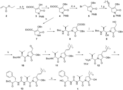 Synthesis of leopolic acid A. Reagents and conditions: a) p-methoxybenzylamine, EtOH, rt, 12 h, 98%; b) diethyl oxalate, NaOEt, EtOH, reflux, 3 h, 83%; c) BnBr, K2CO3, DMF, 0 °C to rt, 1 h, 50%; d) DIBAL-H, CH2Cl2, −78 °C, 2 h, 56%; e) PPh3, CBr4, CH2Cl2, rt, 5 h, 52%; f) PPh3, toluene, reflux, 5 h, 75%; g) n-nonanal, LiHMDS, THF, −78 °C to rt, 5 h, 52%; h) CAN, CH3CN:H2O, 0 °C to rt, 3 h, 73%; i) 2-tert-butoxycarbonylamino-3-methylbutyric acid pentafluorophenyl ester, n-BuLi, THF, −78 °C, 0.5 h, 71%; j) DIBAL-H, CH2Cl2, −78 °C, 2 h, 30%; k) PCC, CH2Cl2, 0 °C to rt, 12 h, 46%; l) n-nonyltriphenylphosphonium bromide, n-BuLi, THF, −78 °C to 0 °C, 2 h; m) TFA, CH2Cl2, 0 °C to rt, 1 h; n) L-phenylalanine benzyl ester DIEA, triphosgene, CH2Cl2, rt, 1 h, 60% over three steps; o) H2, Pd/C, EtOAc, rt, 2 h, 77%.
