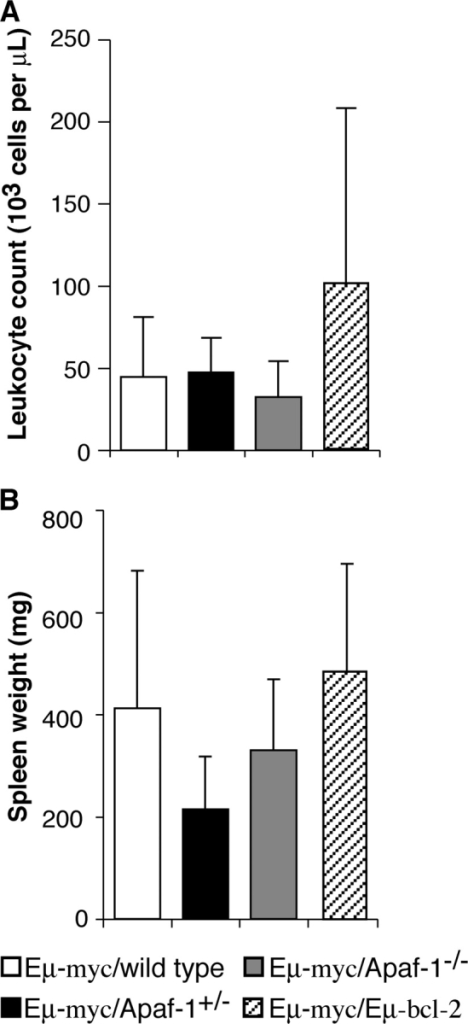 Hematologic parameters of mice with lymphoma. (A) Total peripheral blood white cell count from mice with lymphoma at time of sacrifice. (B) Spleen weight from mice with lymphoma. Data represent arithmetic means ± SD of 3–12 mice of each genotype.