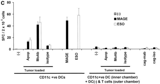 Generation of cancer testis antigen-specific IFN-γ–producing T cells by DCs. (A) Generation of MAGE-3 or NY-Eso-1 specific T cells by peptide-pulsed or tumor cell–loaded DCs. HLA A2.1 −ve myeloma cells (cag, arp) were killed either by γ-irradiation (30 Gy) (apoptosis), freeze thaw cycles (necrosis), or coated with anti–syndecan-1 antibody (mAb)/isotype control, irradiated (3 Gy), and added to HLA A2.1+ ve immature DCs as live (annexin V-negative) cells. DCs were matured using cytokine cocktail. Autologous T cells were stimulated with mature peptide-pulsed or tumor cell–loaded DCs, or tumor cells alone. After two stimulations, the number of HLA A*0201-restricted MAGE3/NY-Eso-1 peptide specific IFN-γ–producing cells were quantified with an ELISPOT assay, using peptide pulsed autologous DCs as APCs. (B) Summary of MAGE3/NY-Eso-1–specific T cells elicited in five experiments, using DCs loaded with dying (apoptotic/necrotic) or antibody-treated (anti–syndecan-1 mAb/isotype) myeloma cells (arp cells, MAGE3+, NY-Eso-1 –ve). (C) Stimulation using CD11c+ DCs from DC-tumor cocultures. CD11c+ DCs were purified using magnetic beads from 4-h cocultures of HLA A2.1 +ve DCs with dying HLA A2.1−ve myeloma (cag) cells (apoptosis/necrosis, as described earlier); or coated with anti–syndecan-1 antibody/isotype. These DCs were then matured using cytokine cocktail and used as APCs to either directly stimulate autologous T cells, or in transwell cultures separated from T cells and unpulsed DCs. After two stimulations, HLA A*0201-restricted MAGE-3 or NY-Eso-1 peptide-specific T cells were quantified by ELISPOT using autologous peptide-pulsed DCs as APCs. Data are representative of two similar experiments.